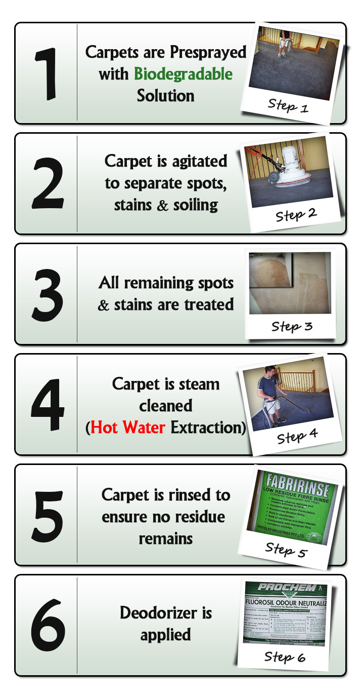 The Mission Carpet Cleaning Process